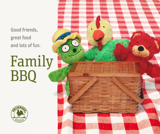 Primrose puppets (Og the Bookworm, Percy the Rooster & Benjamin the Bear) sit in a picnic basket on a checked picnic blanket
