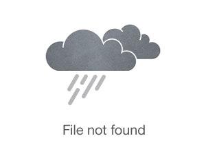 Canon PowerShot SX540 HS a buen precio