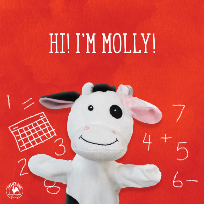 Molly the Cow is the Primrose Friend for September