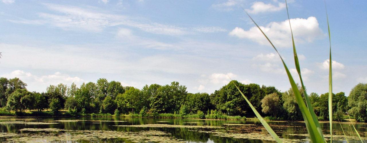Hildesheim Hohnsen See