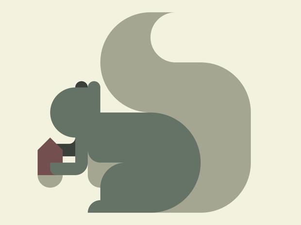 リス Nemury's squirrel
