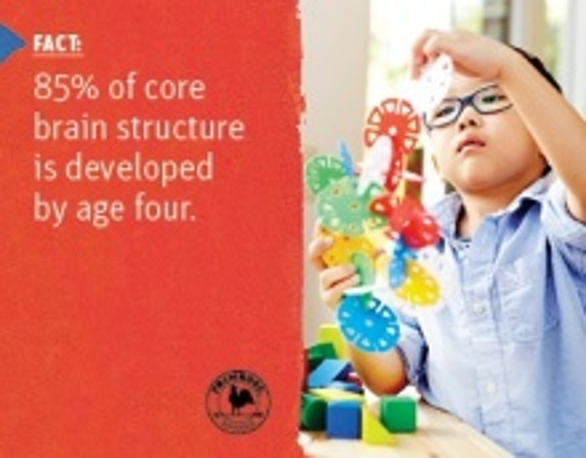 Scientific fact about brain structure developing by the age of four next to a young boy building a tower with colorful discs