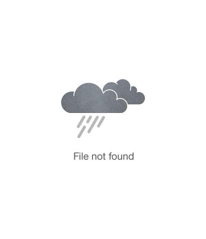Primrose School of Lakehill exterior