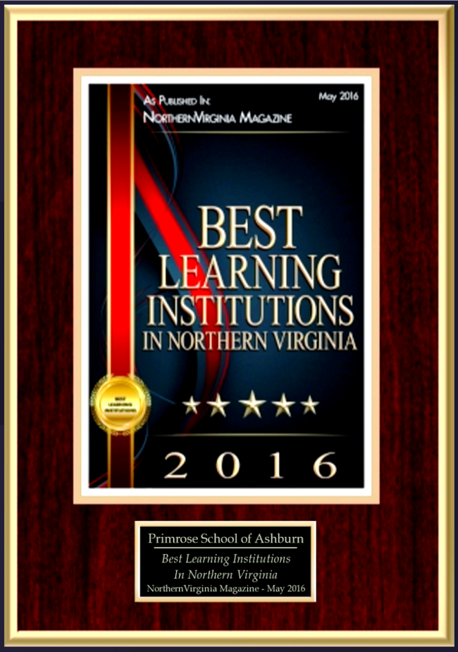 Illustrated poster for the winners of the best learning institutions in Northern Virginia