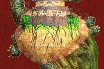 亀城(オブジェクトバルーンバージョン)