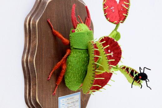 アリトリソウ虫
