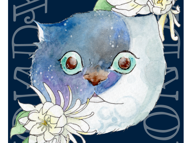 Monday moon/月曜日 月 (2016.11.25)