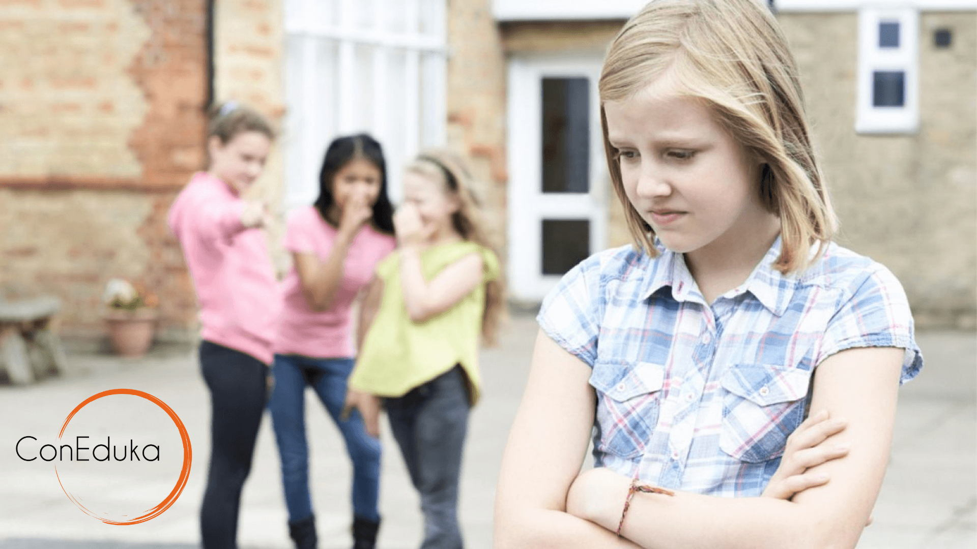 definición de acoso escolar