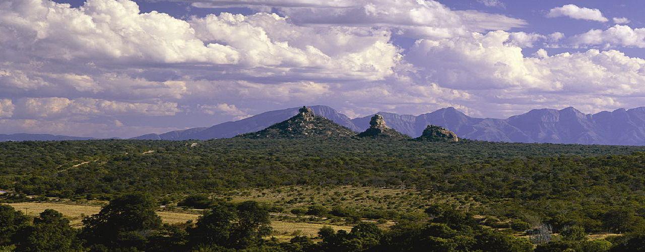 Engel & Völkers - South Africa - HoedspruitHoedspruit - http://www.ucarecdn.com/3bf1b7a6-d9c8-441d-b006-013b4dd34fc3/-/crop/1280x500/0,0/