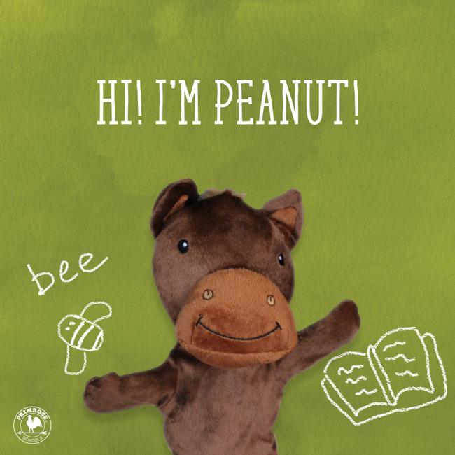 Peanut's Birthday