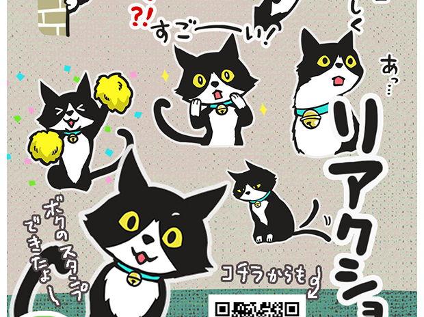 LINEスタンプ 【リアクション猫】