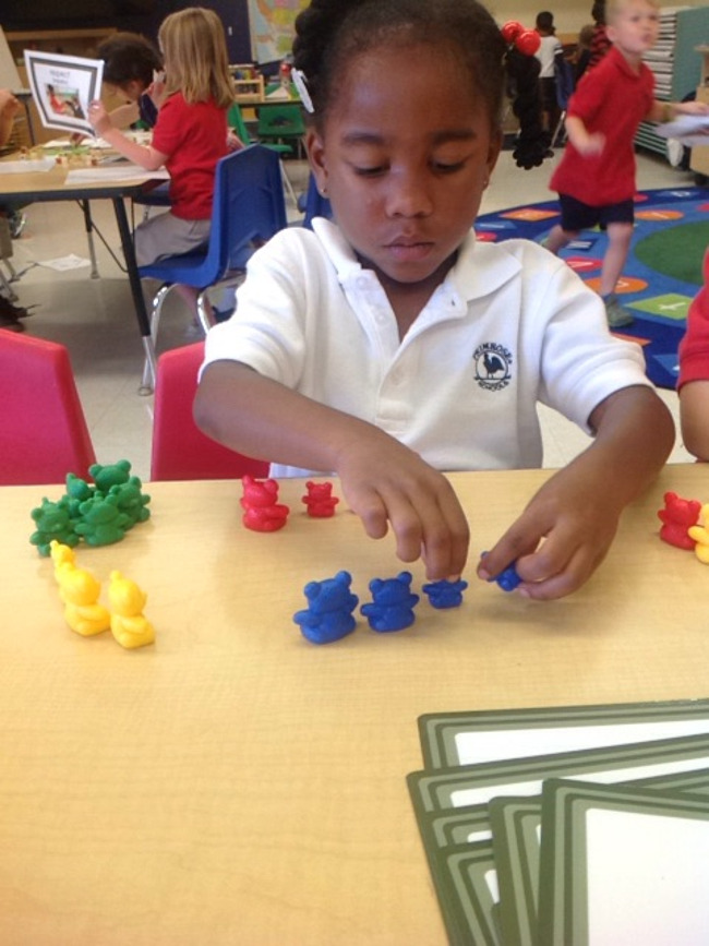 Young Primrose student sorts little figures by color in class