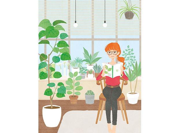 植物のある部屋