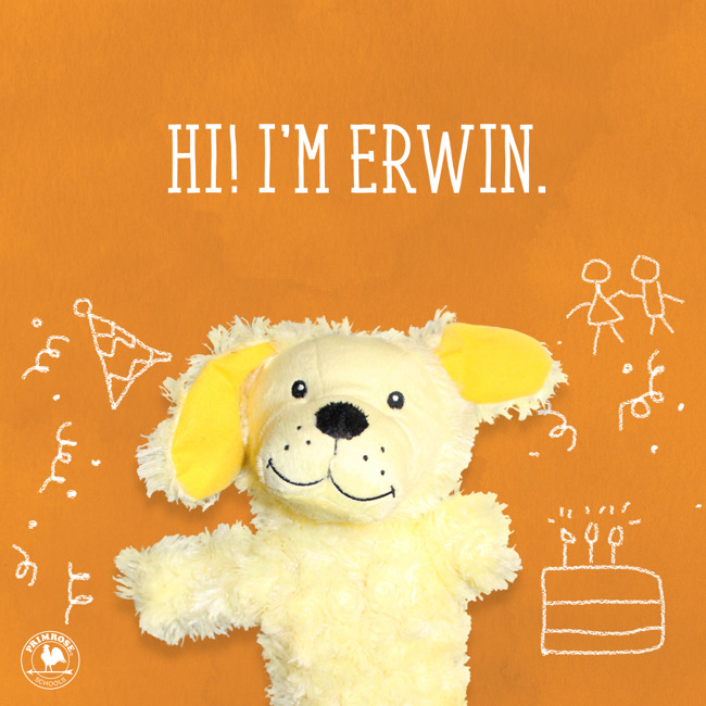 Erwins birthday