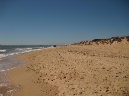 Playa Punta de Piedras