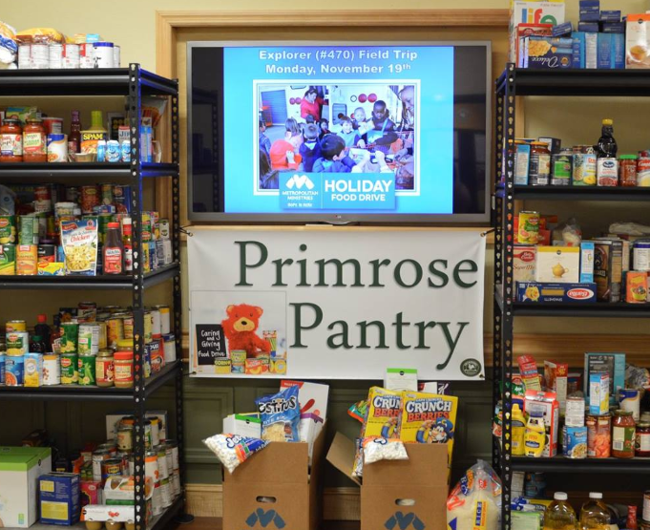 Primrose pantry in Percy Plaza