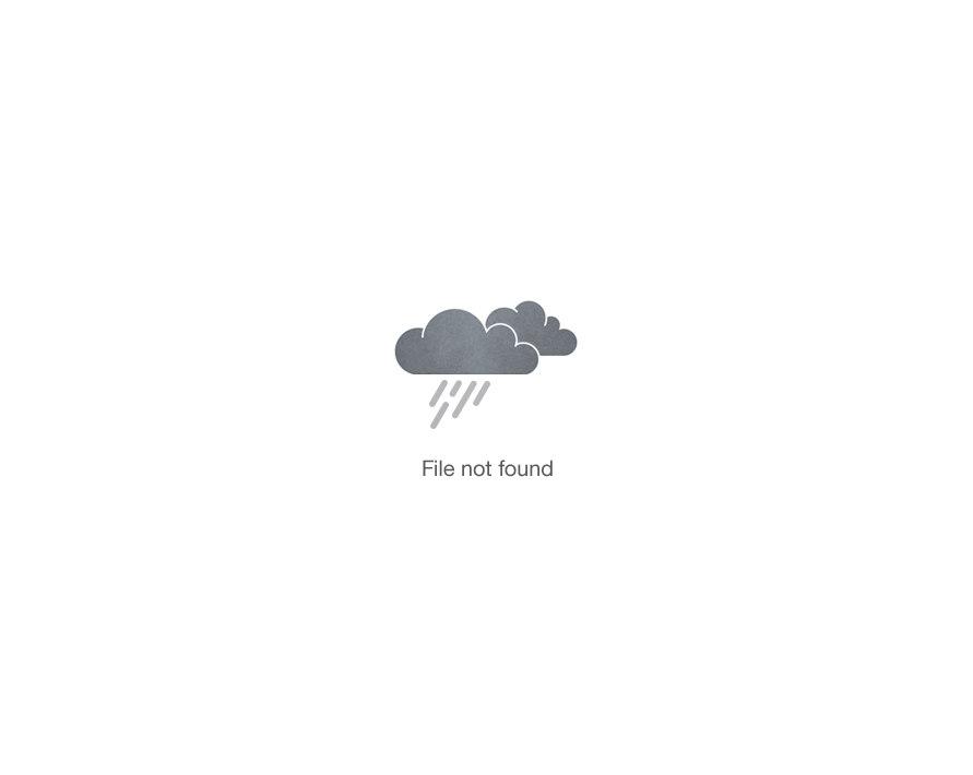 Ms. Montgomery , Explorers Teacher
