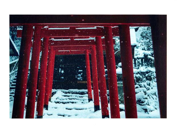 Soil and Soul. ~多可町を紐解くと、人が風土と育み合う日本の底力が見えてくる