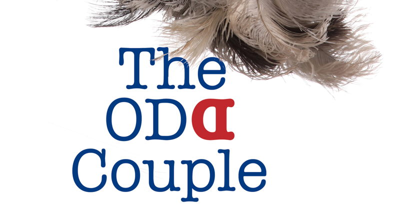 Ask the Artists - The Odd Couple