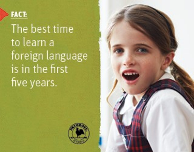 Poster stating a scientific fact about learning new languages in the first 5 years next to an image of a Primrose student