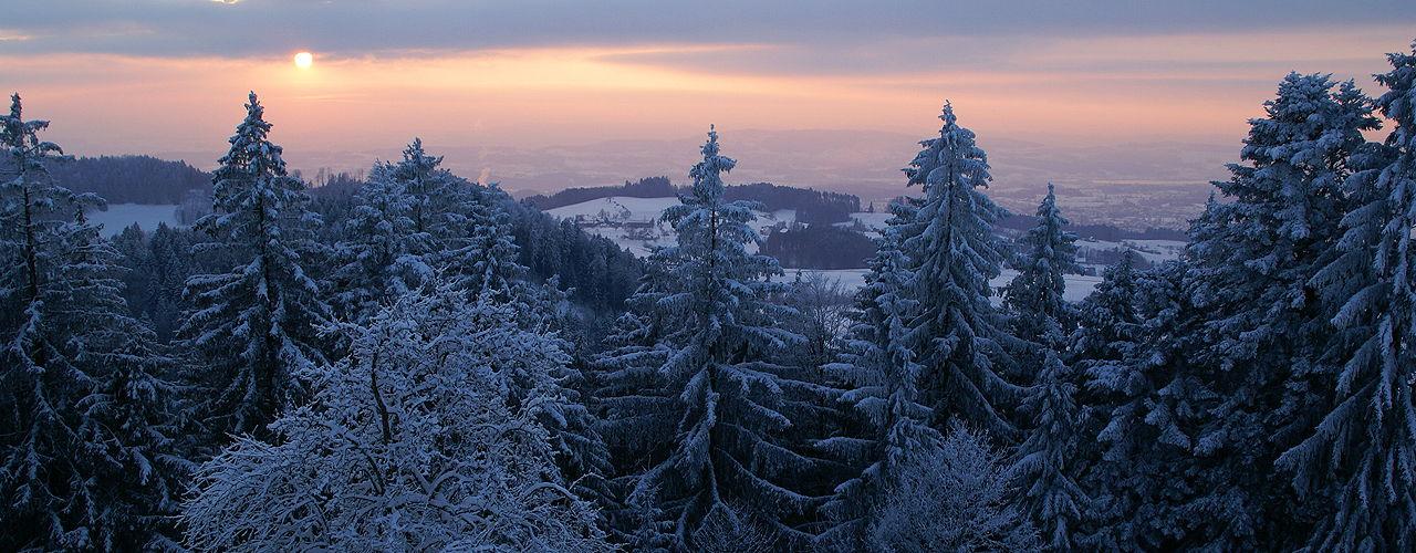 Engel & Völkers - Switzerland - RütiZürcher Oberland - http://www.ucarecdn.com/90aa3c8f-7729-4610-a7b9-088f66e28c88/-/crop/1280x500/0,0/