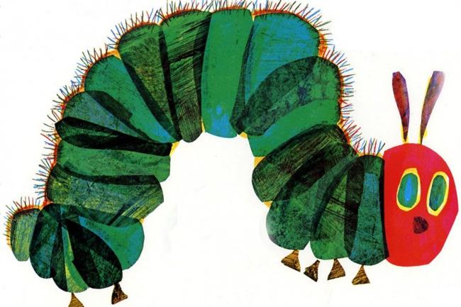 Primrose, Very Hungry Caterpillar