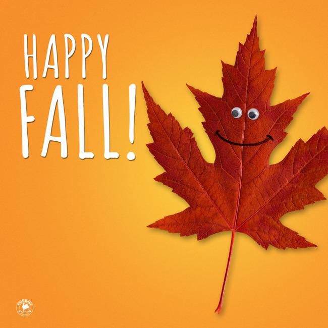 happy fall, jackets
