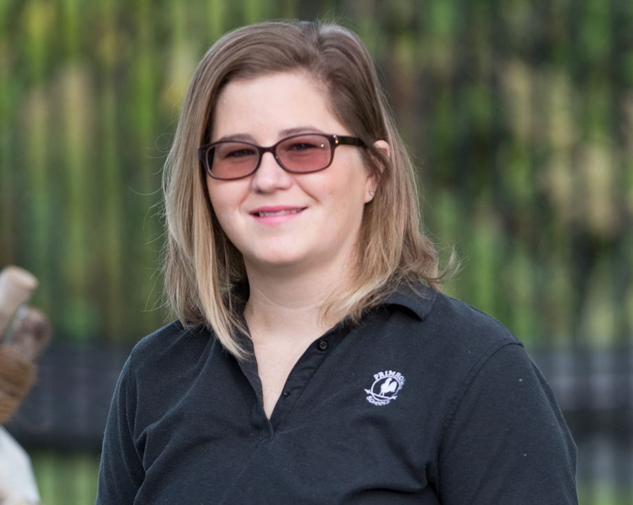 Ms. Brittney , Young Toddler Teacher