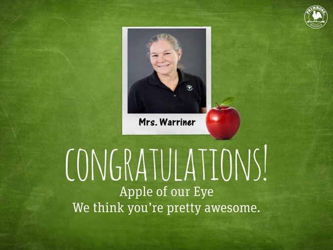 green background picture of the teacher
