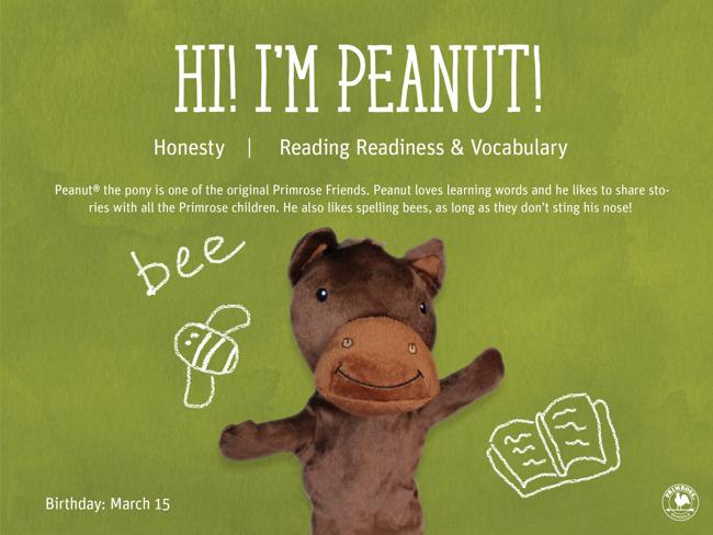 Peanut the Horse