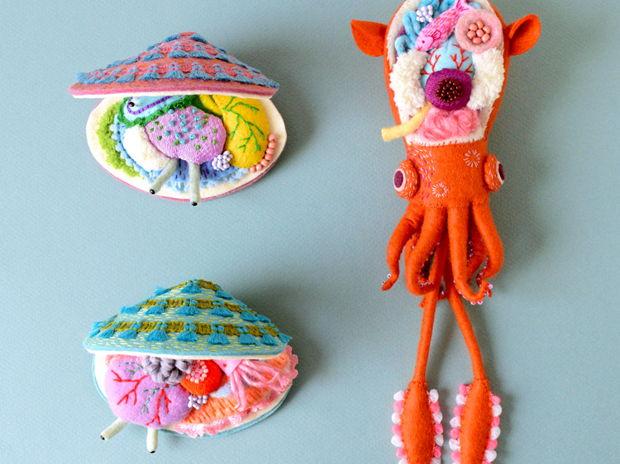小耳イカと五目貝の解剖模型