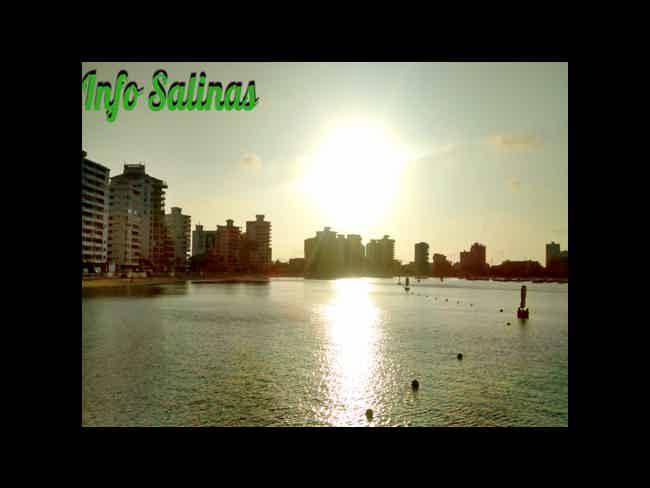 Salinas-Salinas