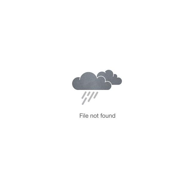 Summer Adventure Club Picture