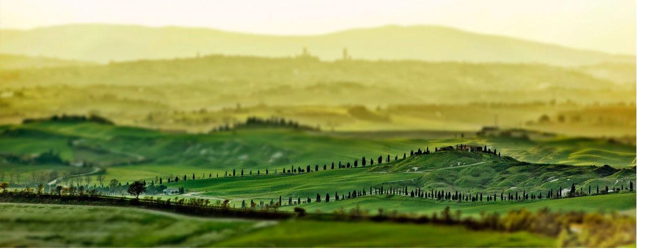 Paesaggio Toscana Siena