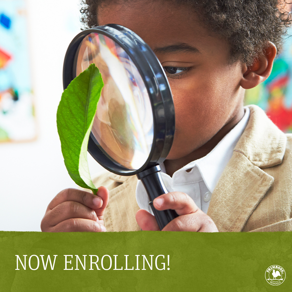 Young Primrose student looks at a leaf through a magnifying glass