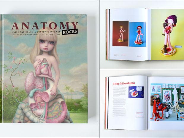 Anatomy Rocks: 解剖アート作品集