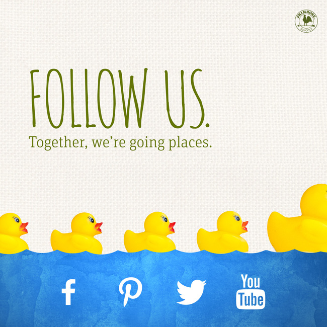 Follow us on social media poster