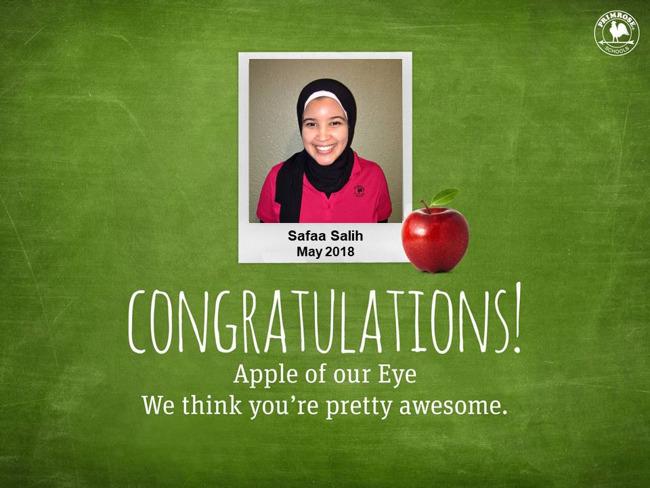 safaa salih may apple of our eye