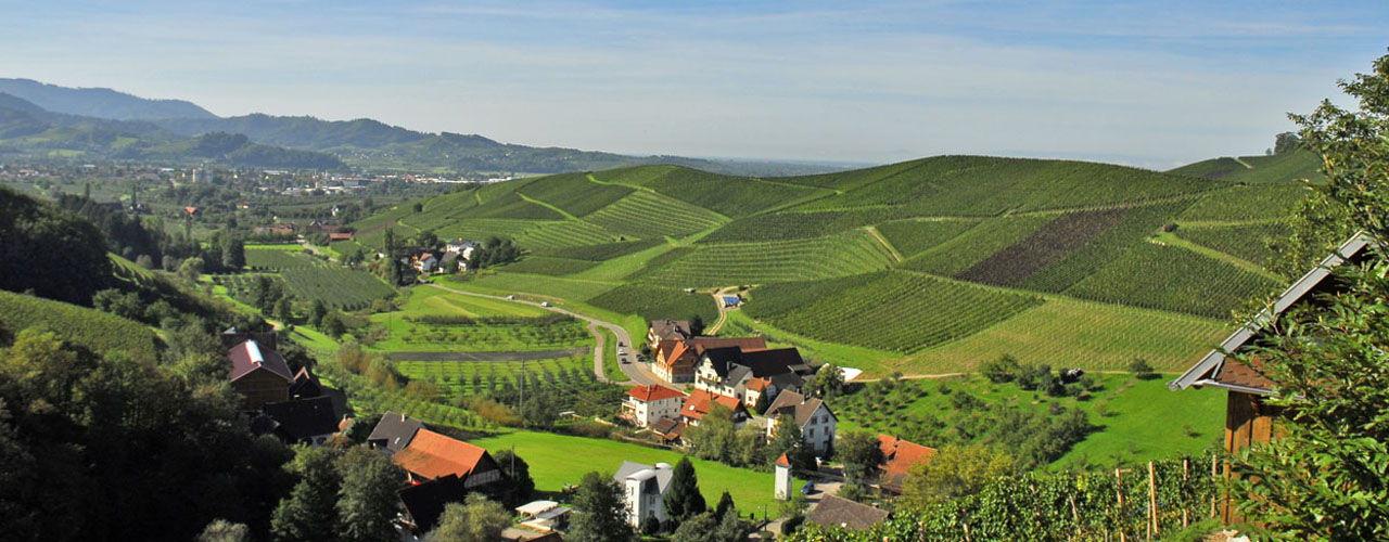 Engel & Völkers - Deutschland - OffenburgOrtenau - http://www.ucarecdn.com/f7caef5a-6e14-44d2-ba5a-19ff78c42e83/-/crop/1280x500/0,0/