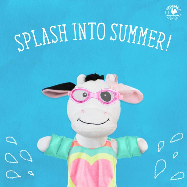 Splash Into Summer