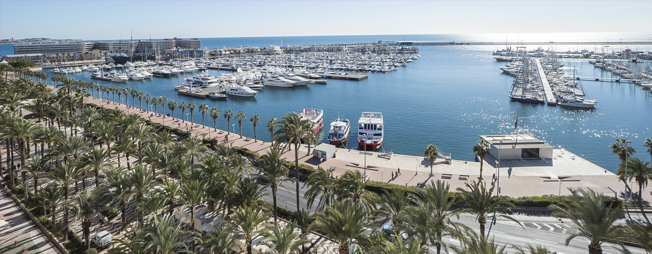 Real estate in Alicante
