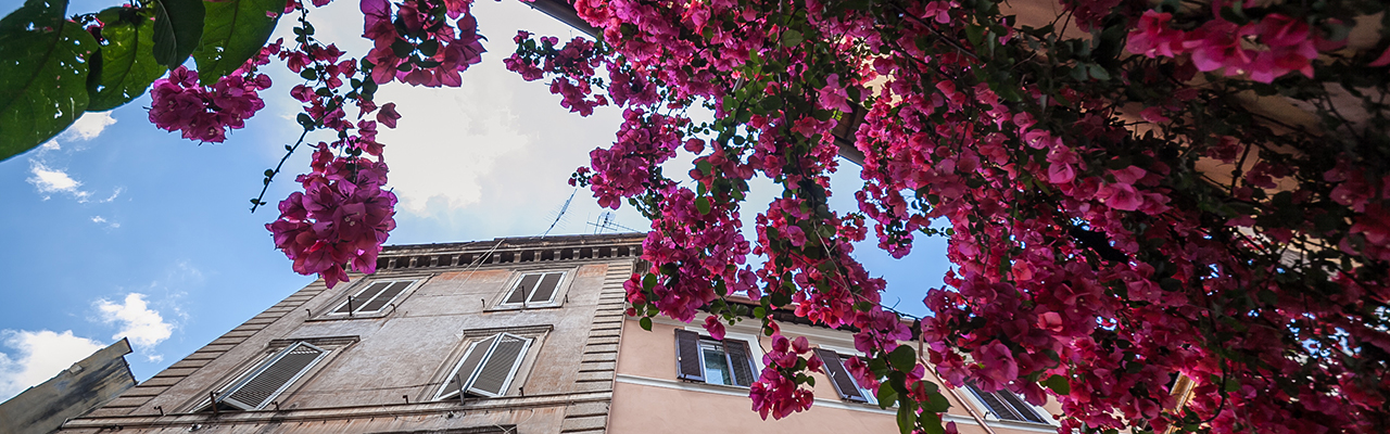 Real estate in Rome - trastevere.jpg