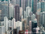 What Does It Feel Like To Live In These Hong Kong Neighbourhoods (As Told by Real Life Residents)2.jpg