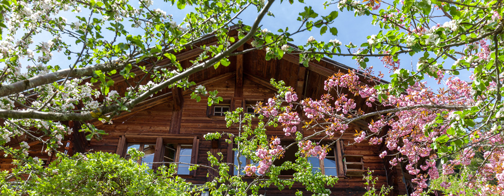 Real estate in Gstaad