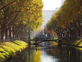 Анализ рынка недвижимости в Дюссельдорфе