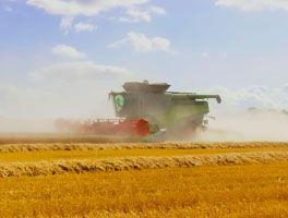 Ackerflächen und Agrarbetriebe
