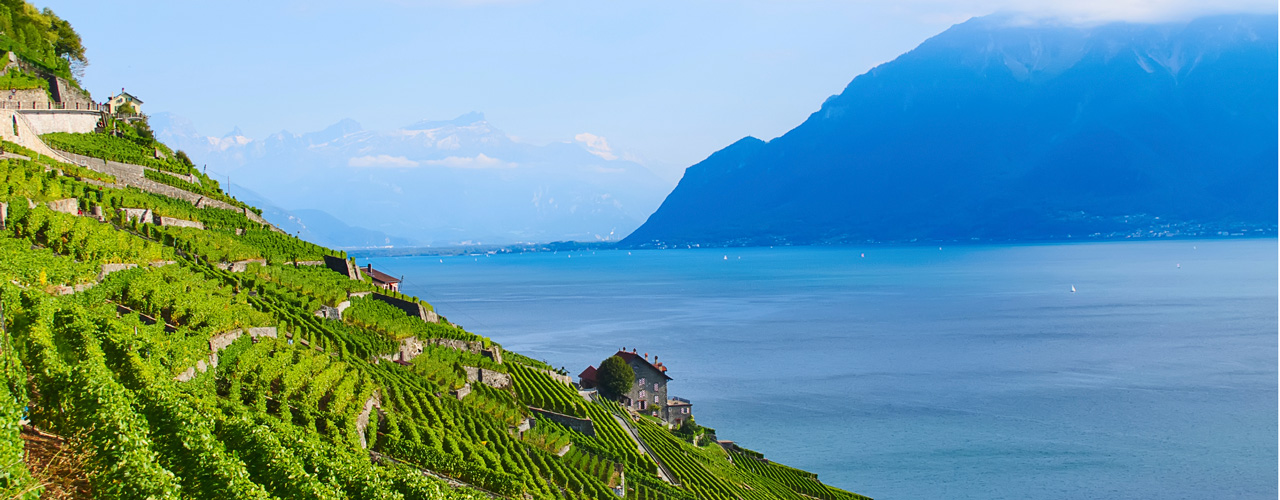 Real estate in Montreux - Montreux Lake Geneva Real Estate Vineyard